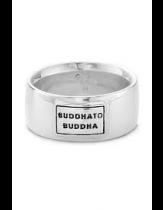 Buddha to Buddha Peter Small - 733/16
